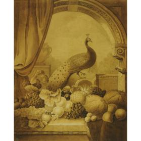 STILL LIFE WITH PEACOCK