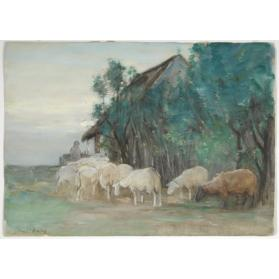 RETURN OF THE SHEEP