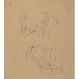 STUDY OF OX AND CART