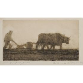 OXEN PLOUGHING, QUEBEC