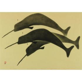 THREE NARWHAL